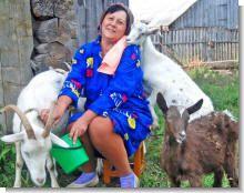 Секреты  разведения коз